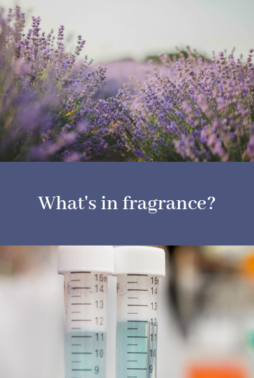 What is in Fragrance? Fragrance ingredients